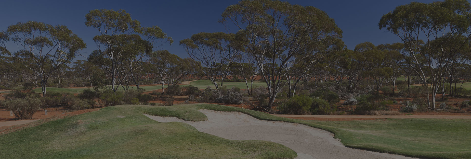 Welcome to Goldfields Golf Club